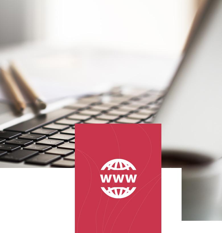 grafica_web